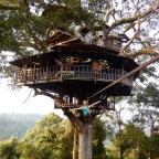 Week 29- Luang Prabang, Slow Boat, and the Gibbon Experience