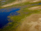 Week 46- Okavango Delta and Etosha National Park